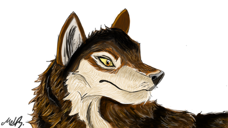 Wolf by valued-vestige