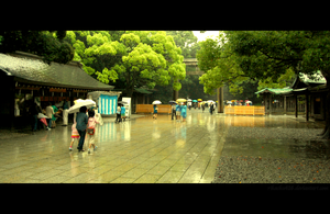 Meiji-Shrine ll by rikachu426