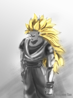 Super Saiyan3 by kiayt