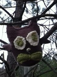 Knit Owl by expired-energy