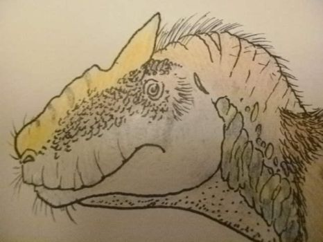 Southern allosaurus... Or not? (detail) by Kazuma27