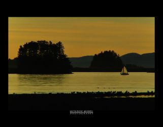 Sailing at Sunset by Isquiesque