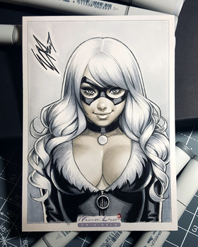 Black Cat by WarrenLouw