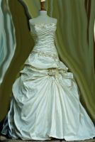 Brides Dress Other View by PrincessInHeaven