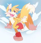 Patreon Requested: Tails by ground-lion