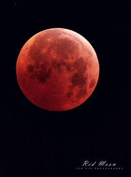 Red Moon II by perry314181