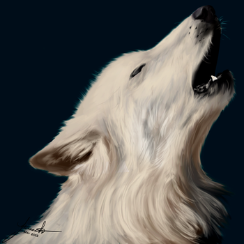 Painted Wolf by morArthfael