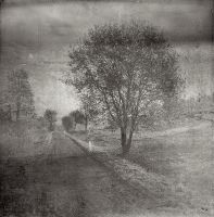 The Way by sternenfern