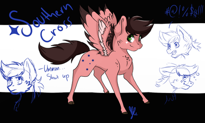 {OC REF} Southern Cross by ThePiage