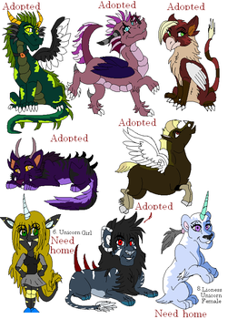 New adopts 5 by dragonrace