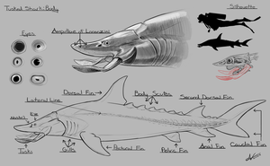 Tusked Shark- Full Body by Atropicus
