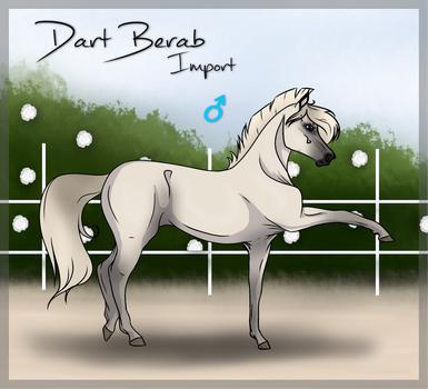 Dart Berab - Import 47 Closed by Miss-Fredriksson