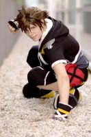 Sora: ready to fight by chibinis-chan