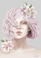 Pink Lily by nLam