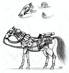 Post-apocalyptic horse concept by Stingray-24