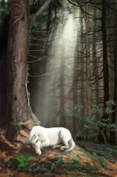 Forest Dreamtime by LeeAnneKortus