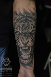 Tiger by ABYSS-TAT-2S