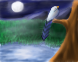 moonlight bird by larissa-the-hanyou