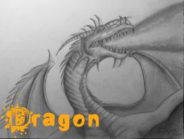 Dragon by OMKDrawings