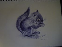 Squirrel by Stormblossom