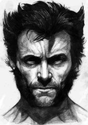 I am_Wolverine by nashKar
