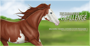 Wild Horse Challenge! by LeavingNeverland
