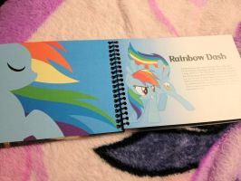 Rainbow Dash Profile by HurricaneChiela