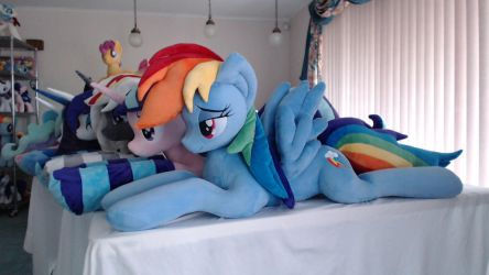 RAINBOW DASH My Flagship Plushie 2 years old by Vile-Flesh