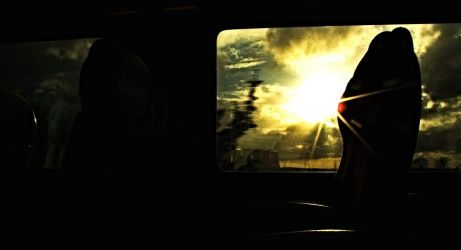 View from the train: Light by Jkimbo