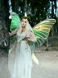 Giant Luna Moth Painted Wings Fairy Near Tree 1 by FaeryAzarelle