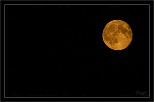 Red moon over Nuremberg by deaconfrost78
