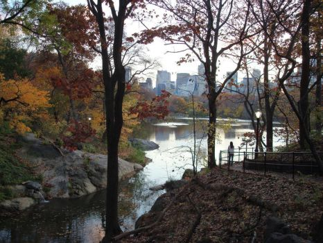 Central Park in November by PerpetualSandwich