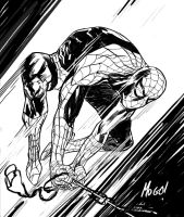 Spidey Commission by Mogorron