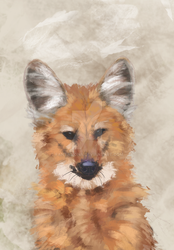 The Maned wolf by Fantasiona