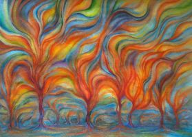 Burning Forest by transe