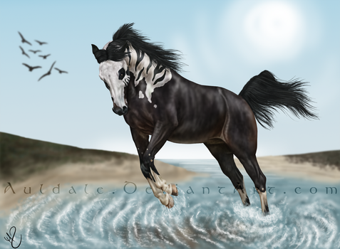 The wild one - Art Trade by Auldale