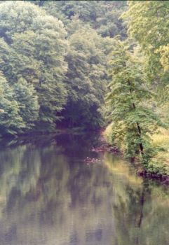 Wupper by abfall