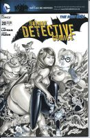 Harley Quinn Poison Ivy Batman Blank Sketch Cover by HM1art