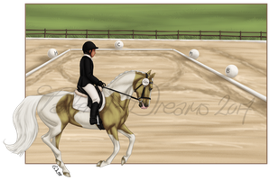 Pennington Farms Dressage by Tattered-Dreams