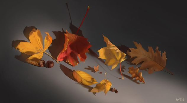 Autumn Leaves life study by teyoliia