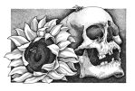 Summer skull by TinyDotsOfDeath