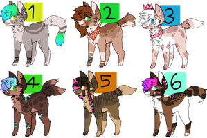 auction adopts open by kimerii