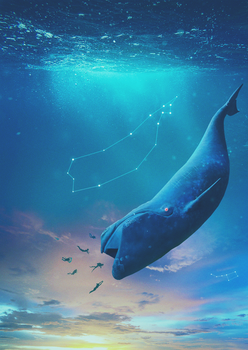 Bule Whale by A7md3mad