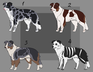 Dog adoptables(CLOSED)-WillowWinters by WillowWinters