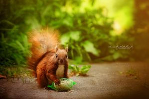Little Squirrel by Inside-my-ART