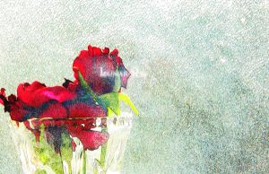 Grunge of Roses by Lunar-Ray