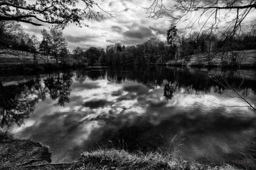 Serenity in Black and White by Creative--Dragon