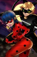 Ladybug and Cat Noir by Teban1983
