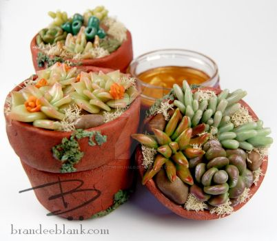 Faux Succulent Jars in Polymer Clay by TinfoilHalo