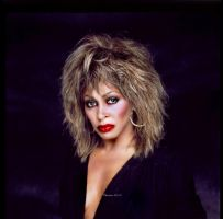 Tina Turner Painting by chamirra